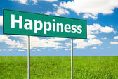 Happiness Green Road Sign — Foto Stock