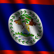 Belize flag — Stock Photo #13535369