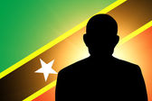 The Saint Kitts and Nevis flag — Stock Photo