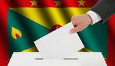 The Grenada flag — Stock Photo