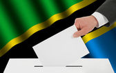 The Tanzania flag — Stock Photo