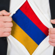 The Armenian flag — Stock Photo #13963202
