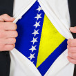 Stock Photo: Bosniand Herzegovinflag