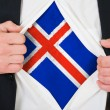 The Icelandic flag — Stock Photo #13964042