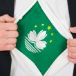 Stock Photo: Macau flag
