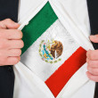 The Mexican flag — Stock Photo #13964663