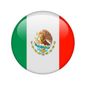 The Mexican flag — Foto Stock