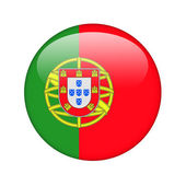 The Portuguese flag — Foto de Stock
