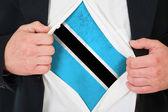 The Botswana flag — Zdjęcie stockowe