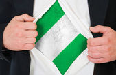 The Nigerian flag — Stock Photo