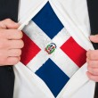 The Dominican Republic flag — Stock Photo #13979203