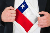 The Chile flag — Stock Photo