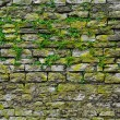 Stone gray extruding bricks — 图库照片