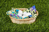 Eggs in the basket — Stock Photo
