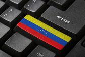 The Venezuelan flag — Stock Photo