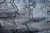 Charcoal textured background — Stock Photo
