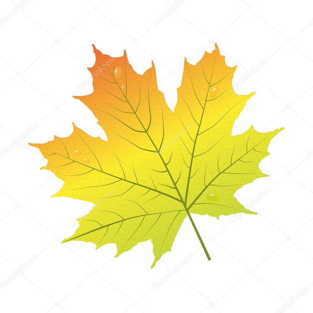 Картинки осень символами