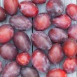 Plum backgorund — Stock Photo