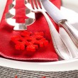 Decorated Christmas Dinner Table Setting — Stock Photo #34707833