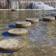 Royalty-Free Stock Photo: Round Stepping Stones