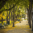 Path through the Park - Stock Photo