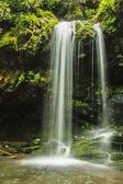 Grotto Falls, Great Smoky Mountain National Park — Stock Photo