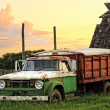 Old Green Grain Truck — Stock Photo #8877796