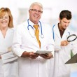 Group Of Doctors — Stock Photo #12665826