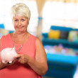 Woman Putting Coin In Piggy Bank — Stock Photo #12667623