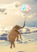 Elephant Flying With Balloon — Stock Photo