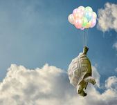 Tortoise Tied With Balloon — Stock Photo