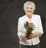 Senior woman holding a flower pot against a grunge background — Stock Photo