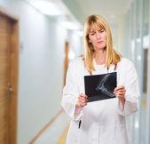 Vážné lékař při pohledu na rentgen — Stock fotografie
