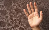 Human Hand — Stock Photo