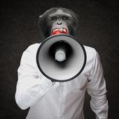 Man With Monkey Head Shouting Through Megaphone — Stock Photo