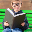 Small Boy Reading Book - Stock Photo