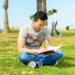 Man Reading Book In Park - Stockfoto