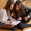 Two Happy Women Studying Together — Stock Photo #25032139