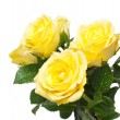Beautiful bouquet of yellow roses — Stock Photo