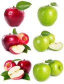 Collection of apples — Stock Photo