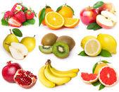 Raccolta di frutta fresca — Foto Stock