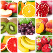Obst-collage — Stockfoto