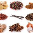 Collection of spices — Stock Photo #42672699
