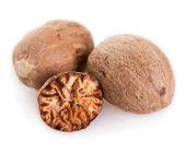 Nutmeg — Stock fotografie