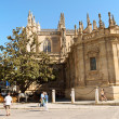 Seville Cathedral — Stock Photo #19280775
