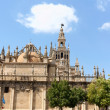 Seville Cathedral — Stock Photo #19280811
