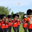 Постер, плакат: Canadian Grenadier Guards on parade in Ottawa Canada