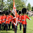 Постер, плакат: Changing of the Guard in Ottawa Canada