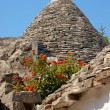 Trulli houses in Alberobello, Italy — Stock Photo
