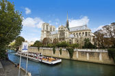 Notre Dame Cathedral, Paris — Stock Photo